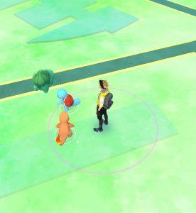Capturer son premier pokemon