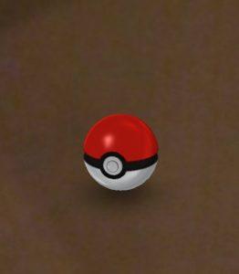 Le pokémon a été capturé !